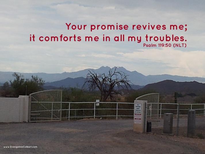 Psalm 119-50