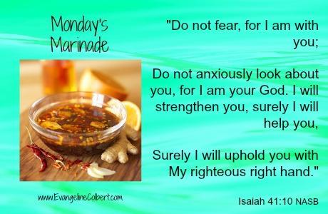 Monday's Marinade Isa 41-10